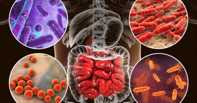 Investigan el potencial del microbioma intestinal para alterar la seguridad de los fármacos