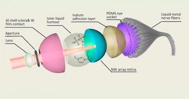 Científicos desarrollan el primer ojo artificial esférico del mundo con retina 3D
