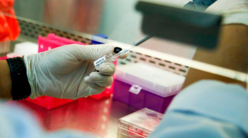 Científicos brasileños y británicos secuencian 427 genomas completos del SARS-CoV-2 en Brasil