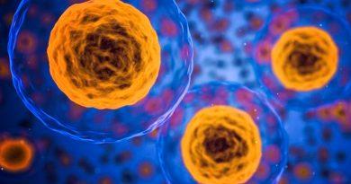 Descubren cómo una célula pulmonar podría ayudar a que se logre una vacuna universal contra el Covid-19