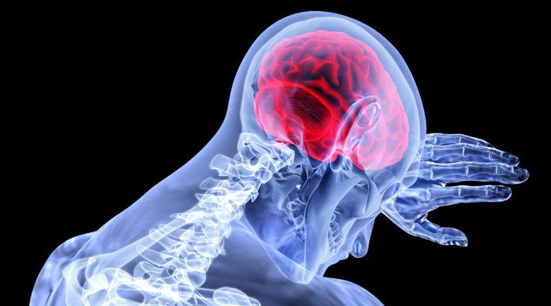 Rupturas amorosas ralentizan la organización funcional del cerebro