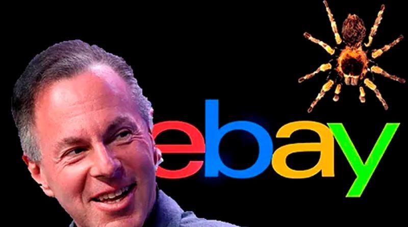 """Fetos, arañas y pornografía contra Ina, la periodista """"aplastada"""" por criticar al CEO de Ebay"""