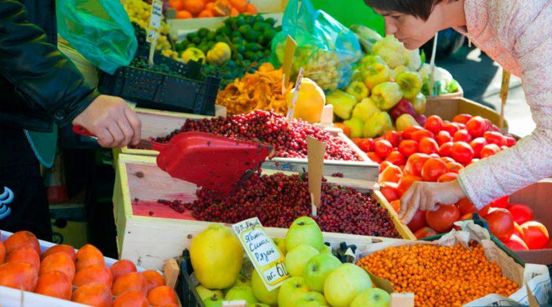 Alimentos de alto valor nutracéutico para fomentar la seguridad alimentaria en población vulnerable ante la COVID19