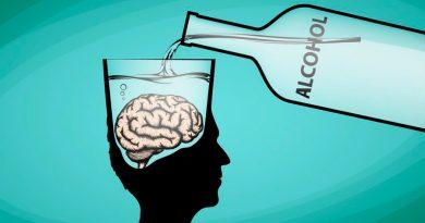 El sistema inmunitario participa en las alteraciones cerebrales que causan alcoholismo