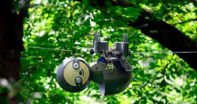Este simpático robot es el rey de los árboles mientras vigila a los animales