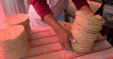 México se tarda y prohibirá hasta el 2024 el glifosato, cancerígeno que se usa en tortillas