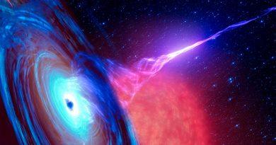 Agujeros negros como hologramas: una descripción que une la Teoría Cuántica y la Relatividad General