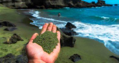 Capturar billones de toneladas de CO2 poniendo arena verde en la playa