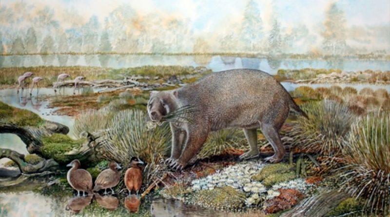 Descubierta una nueva familia extinta de marsupiales gigantes en el desierto australiano
