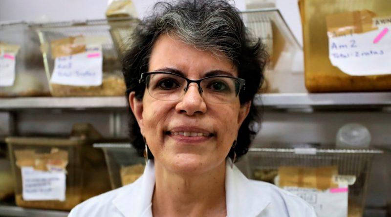 Científicos mexicanos profundizan tratamiento de control a diabetes que actúa de forma similar a la insulina