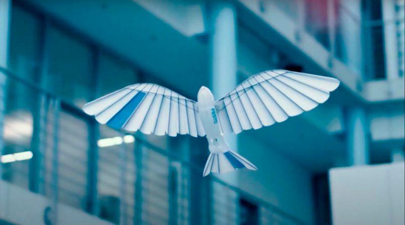 Este impresionante robot es un pájaro biónico que vuela como las aves de verdad