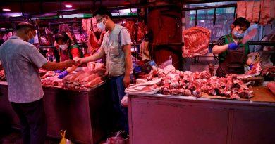 Alerta sanitaria en China por un posible caso de peste bubónica