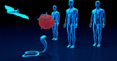 Más de 19 millones de personas mueren al año en el mundo por enfermedades de origen animal