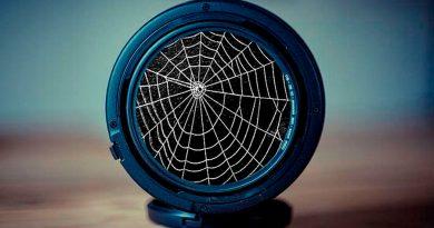 Cámaras de fotos fabricadas con tela de araña: el revolucionario invento para fotografiar el cuerpo humano desde dentro