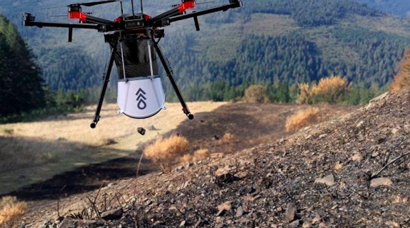 Estos drones son el 'arma secreta' contra la deforestación del planeta: plantan semillas automáticamente