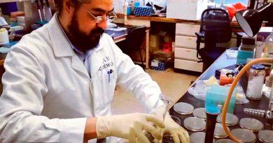 """Científicos mexicanos contra la """"desinfodemia"""" sobre el coronavirus"""