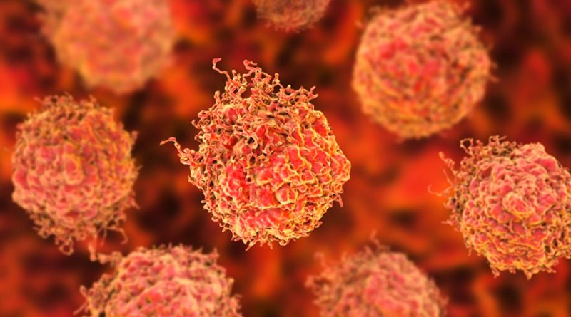 Demuestran que un ácido graso elimina las células cancerosas