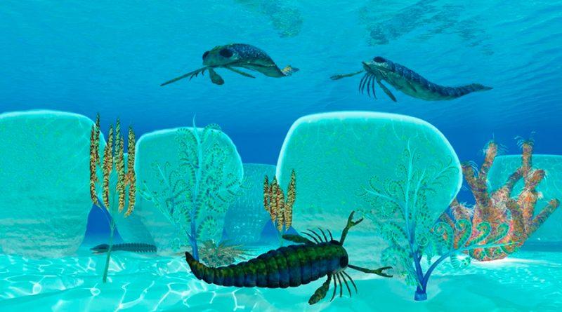 Escorpiones marinos: la temible especie que dominaba el océano hace millones de años