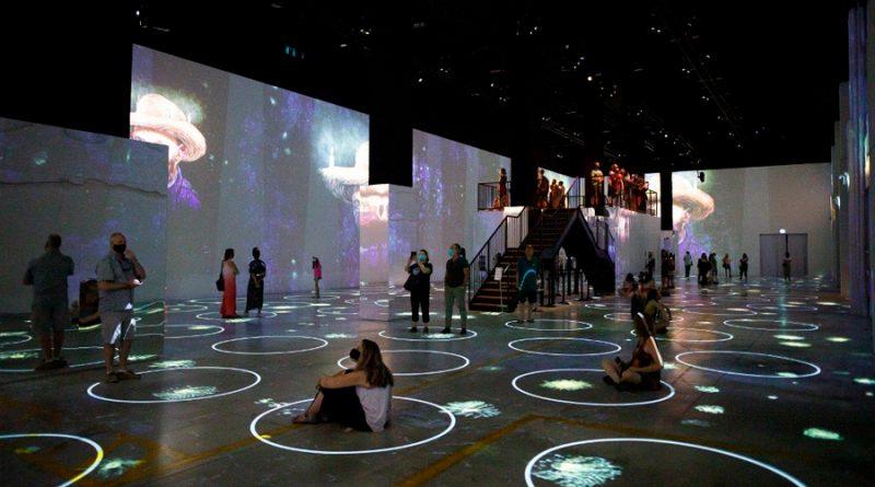 Gritos virtuales y público encapsulado: el futuro de los eventos masivos