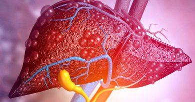 Crean un hígado artificial extracorpóreo que regenera el tejido hepático dañado
