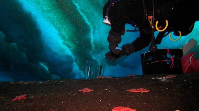 Primera filtración activa de metano descubierta en la Antártida