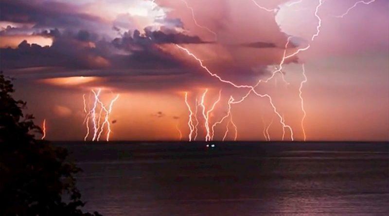 Los rayos dañan 832 millones de árboles en los trópicos al año