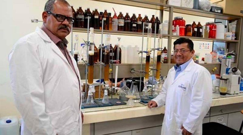 Investigadores mexicanos obtienen patentes sobre desinfectante de Jamaica