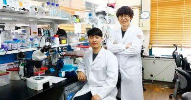Científicos desarrollan enzima contra la vejez que funcionaría en humanos