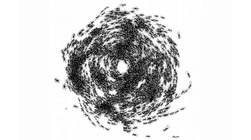 Así se explica la inquietante espiral de la muerte
