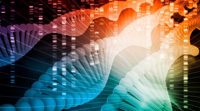 Identifican gen clave para la fabricación de todas las células sanguíneas