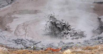 Científicos aportan una nueva visión de la evolución de la vida compleja en la Tierra