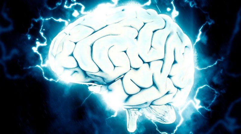 """Hallan una """"firma eléctrica"""" cerebral que identifica al sueño REM de cada persona"""