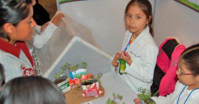 México: 49% de los alumnos de sexto de primaria no son capaces de comparar y evaluar los datos de un texto