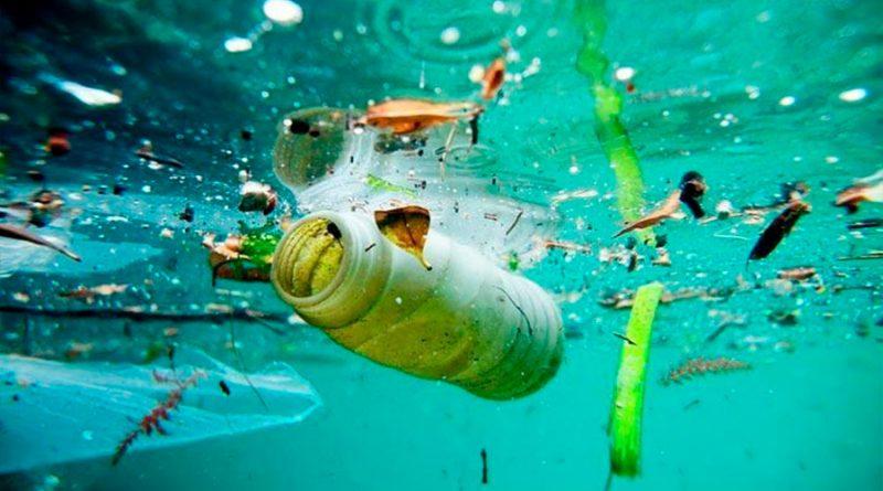 Contaminación plástica se hace patente en tejidos del cuerpo humano