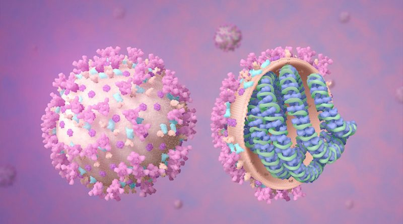¿Tiene el coronavirus SARS-CoV-2 un origen natural? Revisita