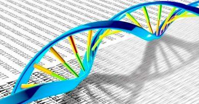 Descubren cómo una enzima protege a las células del daño del ADN