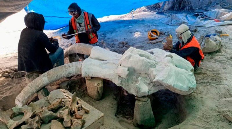 Hallazgo paleontológico de Santa Lucía urge de atención y presupuesto