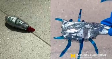 Estos robots usan una capa de 'grasa' corporal que sirve de reserva de energía y aumenta 70 veces su autonomía