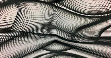 Las moscas desentrañan el misterio de las ilusiones ópticas