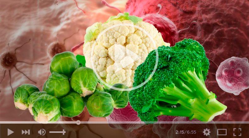 Mediante química verde, científicos de la UNAM estudian propiedades anticancerígenas del brócoli
