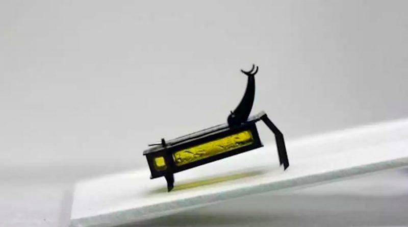 Buscan crear enjambres de insectos robot capaces de actuar coordinados