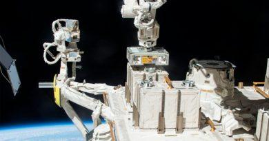 Colonias de bacterias pueden resistir viajes entre la Tierra y Marte