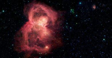 Campo magnético de las estrellas jóvenes les permite alimentarse y crecer