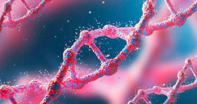 Descubren mecanismo que repara daños en el ADN por algunas quimioterapias