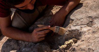 Hallado en Israel un tesoro islámico escondido con 425 monedas de oro puro