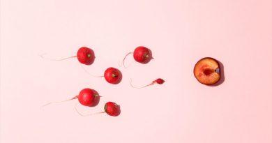 Espermatozoides menos dotados son en realidad los más rápidos