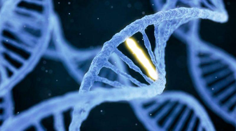 Científicos encuentran mutación para combatir la diabetes y enfermedades cardíacas