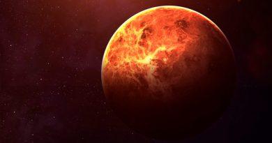 Descubren posibles indicios de vida en Venus