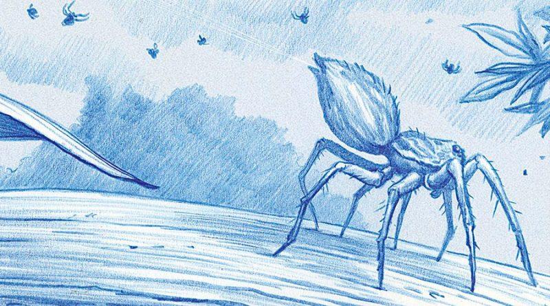 El vuelo oceánico de las arañas y cómo algunas utilizan las fuerzas electrostáticas para elevarse en el aire