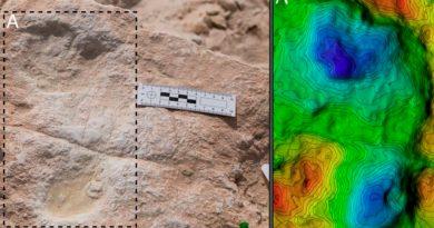 Huellas humanas de 120 mil años halladas en un antiguo lago de Arabia
